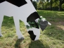 2012-09-21 Einweihung Kuhfamilie
